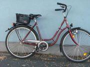grosses 28-Zoll-Damenrad 7-Gang Nabenschaltung innenliegender