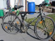 Herren Trekking-Fahrrad