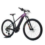 Orbea WILD HT 30 E-Mountainbike