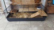 Kaninchen Käfig XXL