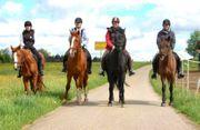Reiterferien in Bayern Termine 2020