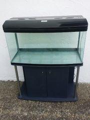 200 Liter Luxus Aquarium mit