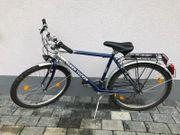 Fahrrad Ben Trucker