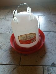 Wasserautomat für Hühner u Kücken