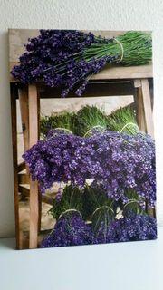 Leinwand - Lavendel Wandbilder dekorativ 4