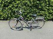 Erwachsenen Fahrrad