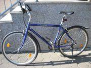 Sportliches Herren Trekkingrad Crossrad 28
