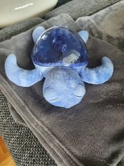 B Cloud Schildkröte Blau