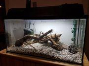 Aquarium 100 Liter zu verschenken