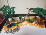 Playmobil Wasserlandschaft