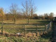 Grundstück mit Pferdekoppel für 3