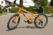 Frog bike 55 Kindermountainbike 20