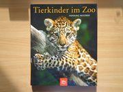 Tierkinder im Zoo ein Großbildband