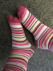 Socken Strumpfhose und Schuhe zu