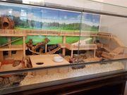 Terrarium mit Unterschrank und Einbauten