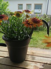 Hängetopf für Blumen