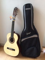 Gitarre Ortega R-