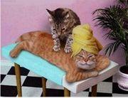 Massage für frau