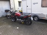 Honda CBF 500 mit ABS