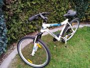 Mountain Bike Haibike