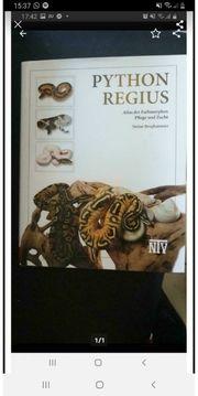Python regius das Buch