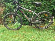 Scott Mountainbike 26 Rahmen large