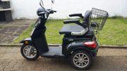 Elektroscooter 800 W Seniorenmobil E-Fahrzeug