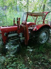 Traktor als Oldtimer zu verkaufen