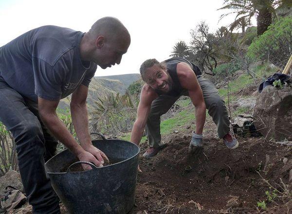 Trockenmauerbau Kurse auf La Gomera