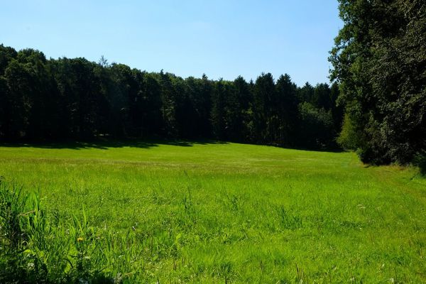 SUCHE Grundstück ab 1 400m²