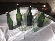 Glasflaschen 0,5l (