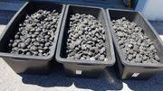Kohle für Kamin oder Grill