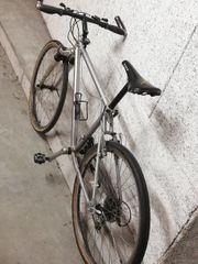 Bontrager Race 4130 HT Fahrrad