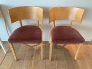 Echte Tischler Stühle mit Polsterung