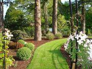 Gartengestaltung vom Profi Beratung Planung