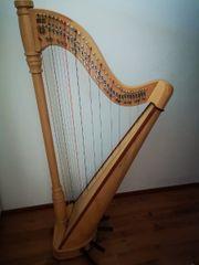 Harfe Schulharfe