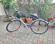 Damenfahrrad Fahrrad Prince 28 Zoll