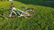 24 FAhrrad - KTM Wild One