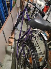 Fahrrad Konsul Shimano Index System