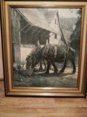 Gemälde von Hans Nickel Pferde