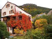 IL Privatverkauf Bauernhof Trèves Languedoc-Roussillon