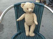Teddybär uralt
