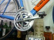 Rennrad Speedbike Fixi Retro Vintage