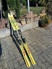 Ski Alpin-Ski Abfahrtsski
