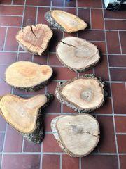 Holzscheiben trocken Baumscheiben DIY Deko