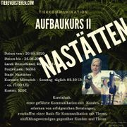 Tierkommunikation lernen Monika Jaeger Aufbau