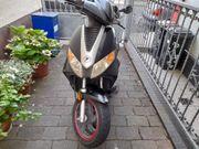 Pegasus Gp 50 Roller