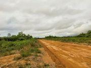 Brasilien riesengrosses 1 000 Ha