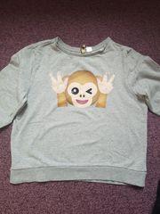 Affen Pullover
