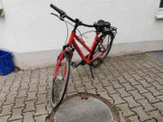 Fahrrad Pegasus Solero SL Damen